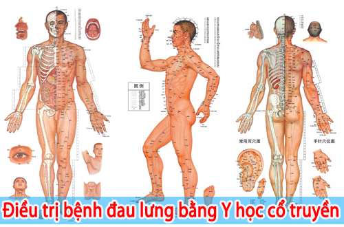tri-dau-lung-bang-y-hoc-co-truyen